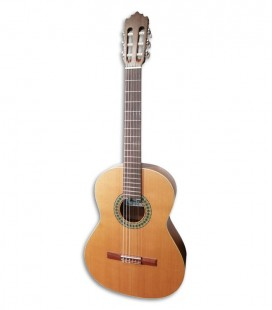 Paco Castillo 201 Classical Guitar Mate Cedar Sapelly