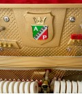 Photo detail of the interior of the Upright Piano Petrof P122 N2