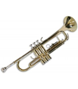 Photo of trumpet Sullivan TT100