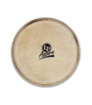 Photo of bongo head LPA663