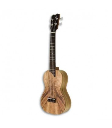 Photo of ukulele concerto APC CMX