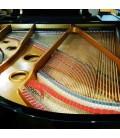 Grand Piano Pearl River GP170 PE 3/4 photo