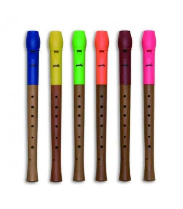 Photo of recorders Goldon 42000 with heads in several colors