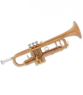 John Packer Trumpet JP251SW B Flat Frosted Gold with Case