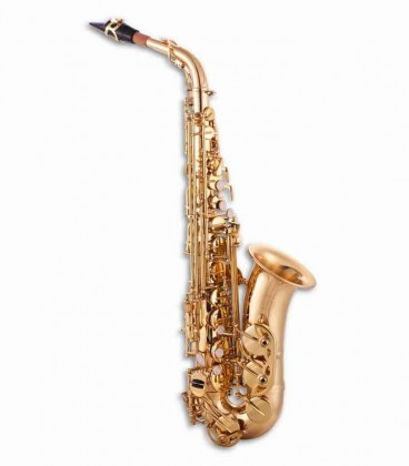 Photo of the John Packer Alto Saxophone JP041