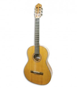 APC Classical Guitar 1C Lady Simples Nylon
