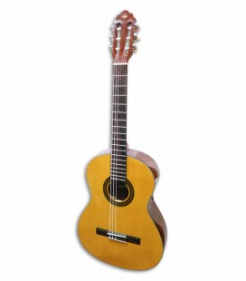 Classical Guitar VGS Student